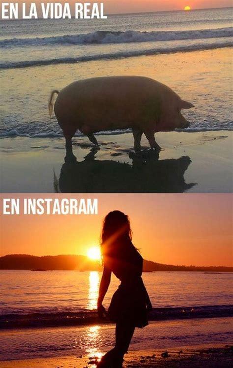 imagenes chistosas reales instagram y la vida real im 225 genes graciosas humor