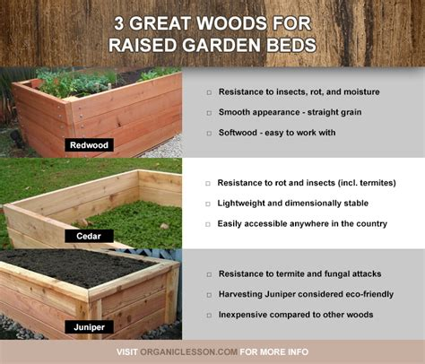 best wood for raised beds best wood and lumber for building raised garden beds