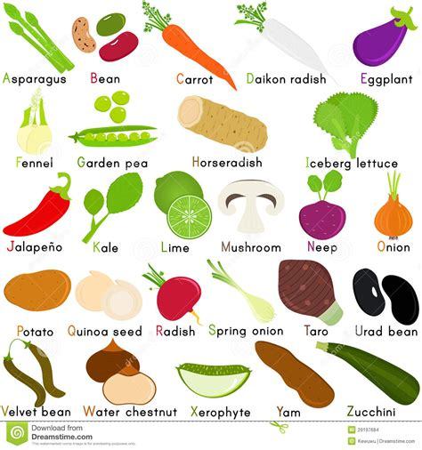 vegetables a to z vector icons of vegetable with alphabet a to z stock