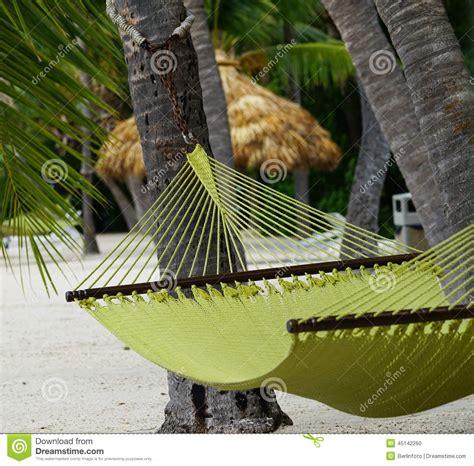 bilder toilettenschã sseln h 228 ngematte auf strand in florida schl 252 sseln stockfoto