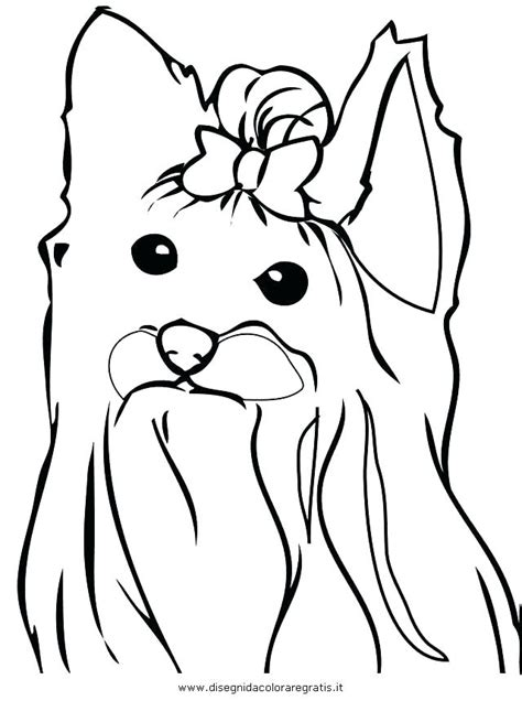 coloring page yorkie poo yorkie coloring page puppy coloring pages to print