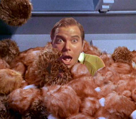 trek tribbles anon s tribbles or how i learned to stop worrying and