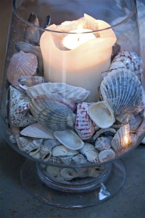 decorate  seashells  inspiring ideas digsdigs