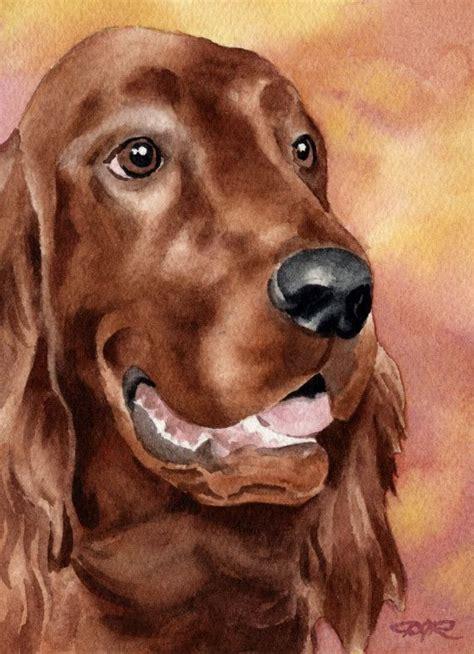 irish setter dog walker 83 best irish setter drawing images on pinterest irish