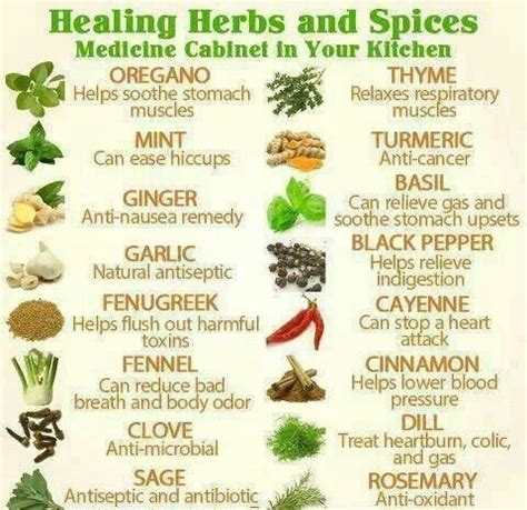 herb chart medicinal herb chart herbalism medicine