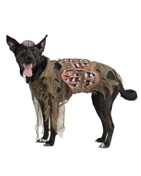Banana Kostum By Melvie Shop top 10 trending costumes for 2015 dogtime