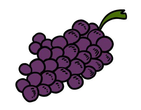 imagenes color uva dibujo de uvas moradas pintado por kareng en dibujos net