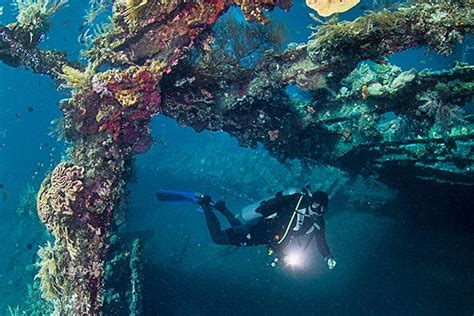 Bali Diving Package scuba diving in bali dive course padi ssi bali