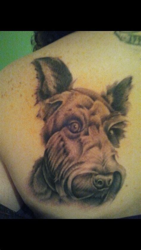 scottish terrier tattoo design scottish terrier scottie dogs