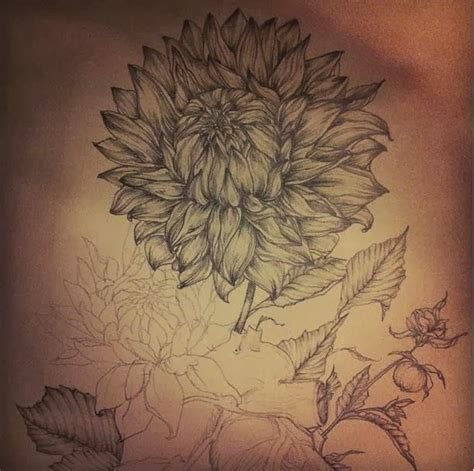dahlia tattoo designs 25 best ideas about dahlia flower tattoos on