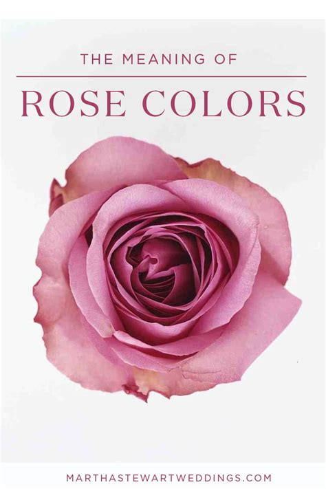 the meaning of the color of roses the meaning of colors martha stewart weddings