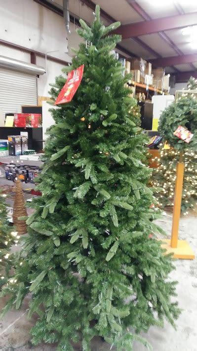 12 ft sierra devada tree tree 7 5 nevada fir with 8 function dual color led lights a m office supply