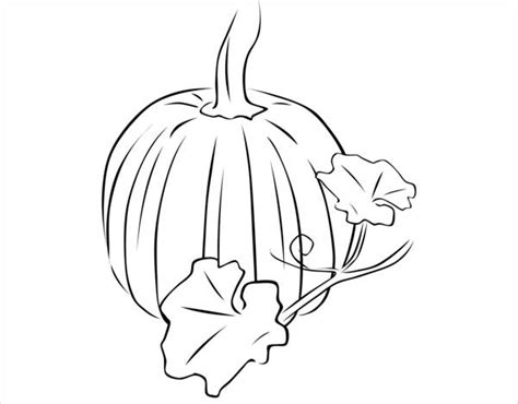 pumpkin leaf coloring pages 9 pumpkin coloring pages jpg ai illustrator download