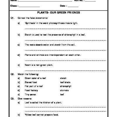 why are plants green worksheet 7 2 25 best ideas about science worksheets on grade 2 science second grade science and