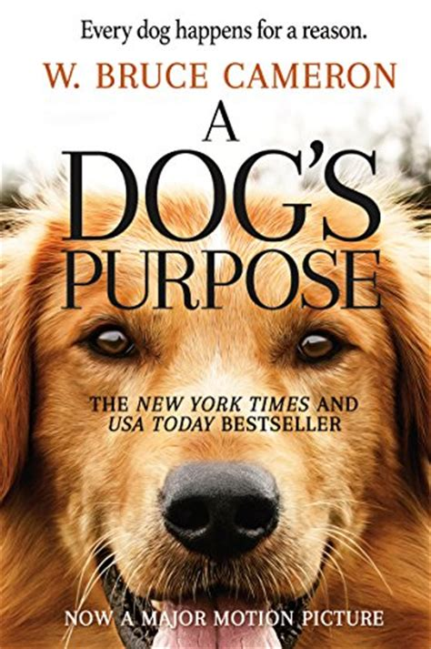 the dogs purpose a s purpose 2017 prolog
