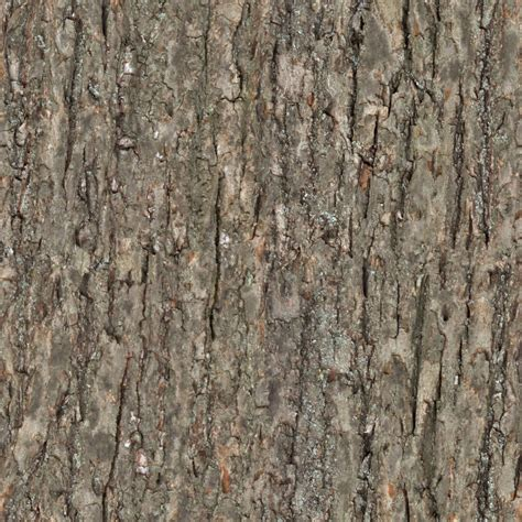 high resolution seamless textures wood tree bark seamless