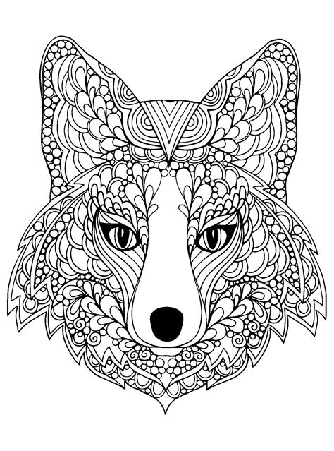 coloring pages adults foxes beutiful fox head animals coloring pages for adults