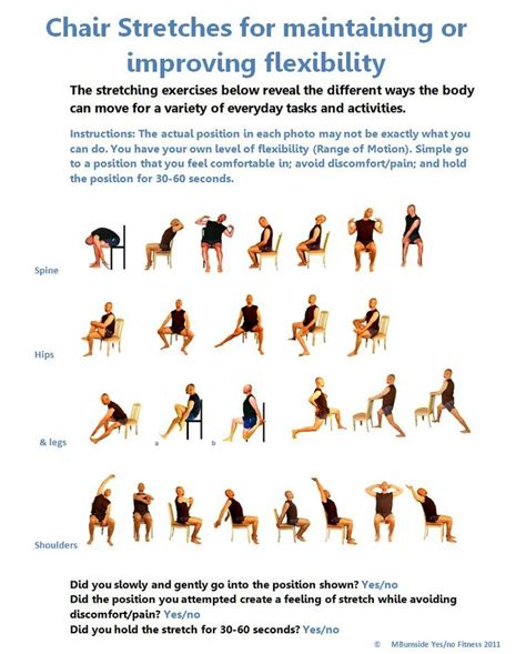 chair exercises for elderly adults 50625a4589c31656b0c6a180c23a787c jpg 736 215 915 pixels