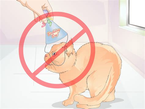How To Make A Paper Cone Hat - 3 ways to make a cone hat for a cat wikihow