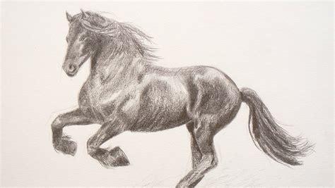imagenes perronas de leones c 243 mo dibujar un caballo arte divierte youtube