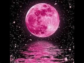 pink moon april full pink moon april 2017 buzzpls com