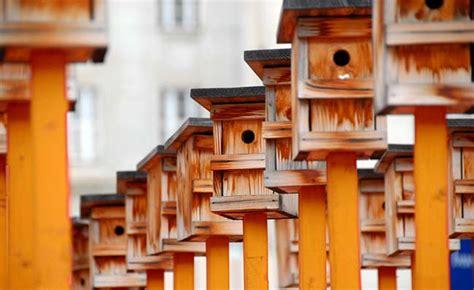 Meisen Nistkasten Selber Bauen 1812 by Nistkasten Bauen Tipps Und Tricks Vogelhaus Futterhaus