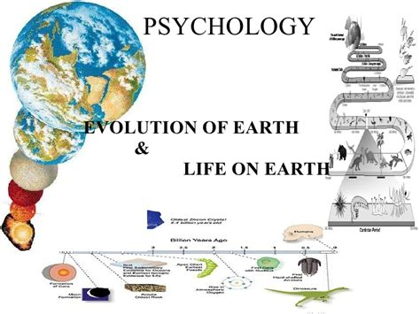 the origin and nature of life on earth the emergence of the fourth geosphere ebook evolution of life n earth