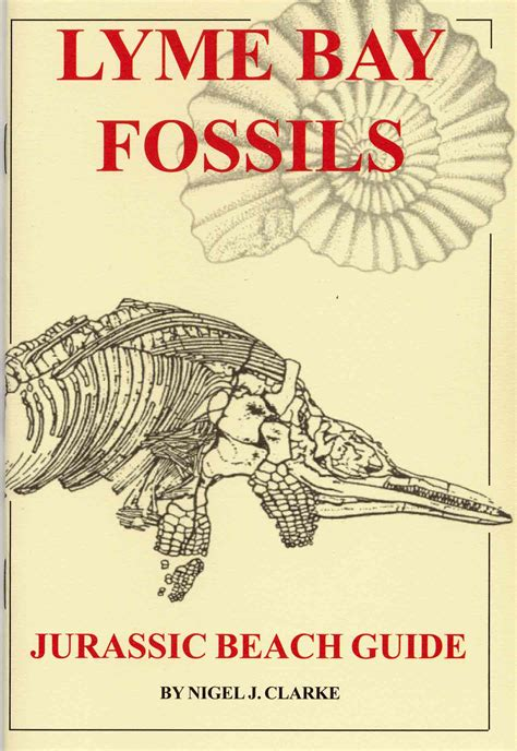 she found fossils books fossil walks fossil books