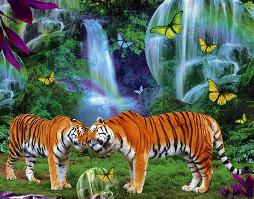 imagenes de paisajes con animales tigerclan images tiger hd wallpaper and background photos