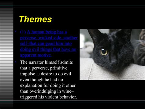 themes of black cat the black cat intro