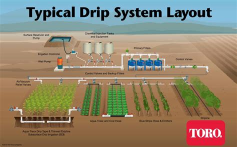design and layout of drip irrigation system subsurface drip irrigation sdi driptips by toro micro