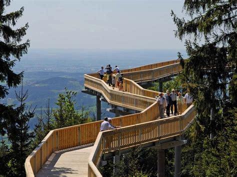 haus auf dem kopf bayerischer wald waldwipfelweg in maibrunn bayerischer wald