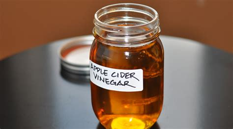 how to make apple cider vinegar at home drenchfit