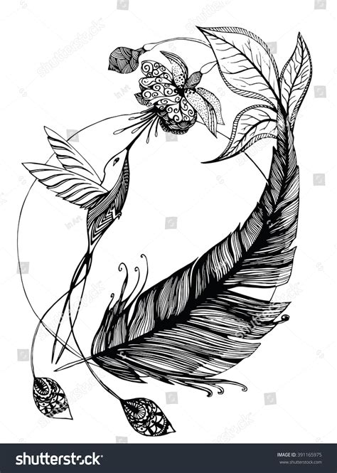 bevalet s hummingbirds and flowers a vintage grayscale coloring book vintage grayscale coloring books volume 3 books hummingbird flying flower feathers black white stock