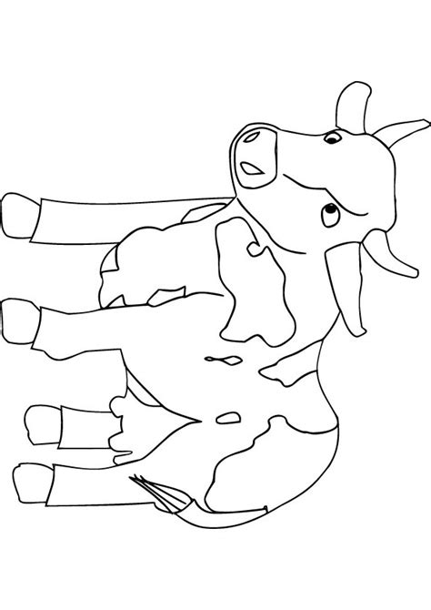 coloring pages of baby calf free coloring pages of baby cow