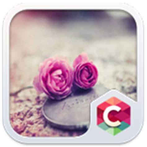rose theme apk pink roses theme c launcher apk indir megadosya