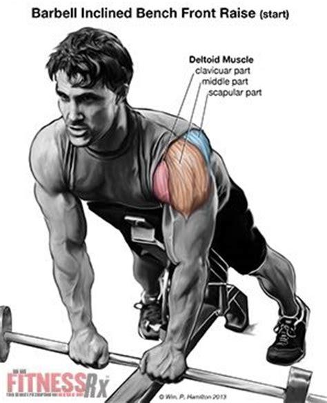 posterior shoulder pain bench press shoulder плечи build your anterior deltoids with