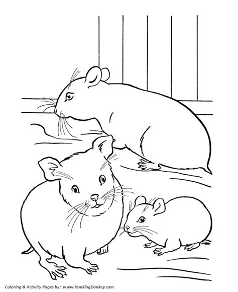 Free Coloring Pages Of Pet Animals Hamster Coloring Pages Printable