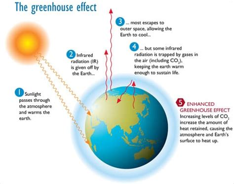 Green House Gasses by Can You Imagine A World Without Coral Reefs