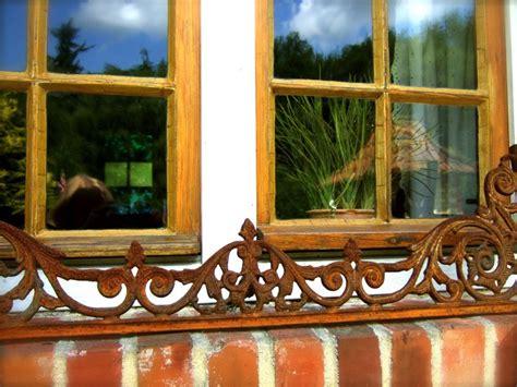 Gro E Ameisen Im Garten 4992 by Ameisen Im Blumenkasten Ameisen Im Blumenk Bel Was Tun