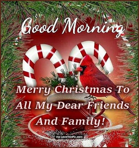 merry christmas morning    dear friends  family pictures   images
