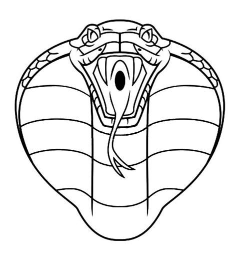 coloring pages king cobra how to draw a king cobra snake by you coloring pages of