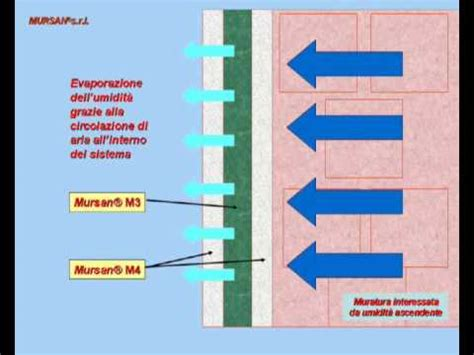 muffa sui muri interni mursansrl it prodotti e soluzioni contro l umidit 224 e le