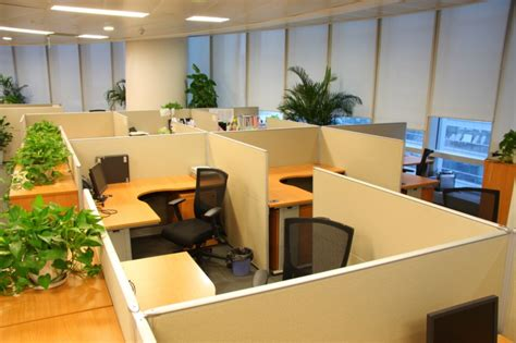 feng shui office design the importance of feng shui