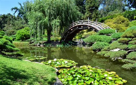 Where To Find L A S Most Exquisite Japanese Gardens Los Japanese Botanical Gardens Los Angeles