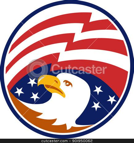 american bald eagle with flag stock vector