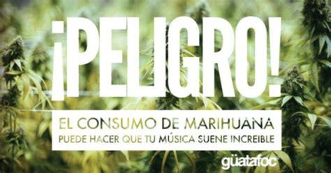 imagenes de weed con frases de amor 161 peligro el consumo de marihuana puede hacer que tu