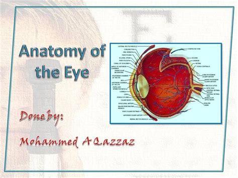 the human eye authorstream eye anatomy authorstream