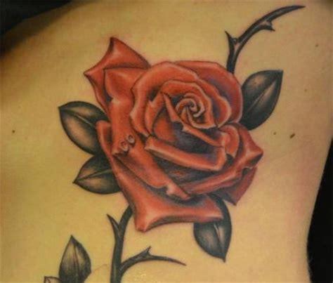 imagenes de tatuajes de rosas rojas tatuajes de rosas y todos sus significados mujeres femeninas