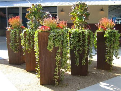 Diy Succulents by Aprenda A Montar Um Terr 225 Rio De Suculentas